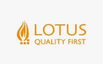 Lotus Kaminofen können Sie günstig kaufen bei 123-Kaminofen